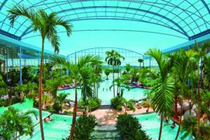 der Blick ins Palmenparadies Quelle: Badewelt